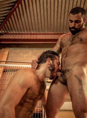 anal sex bear big dick blowjob hairy jessy ares muscle men pornstar ricky ares rimming
