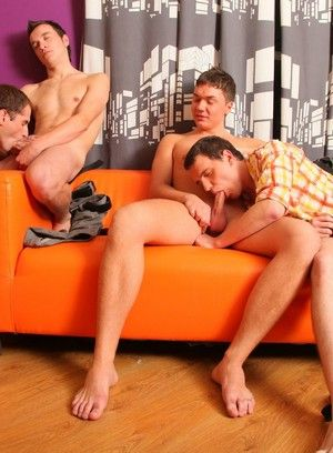 Young gay mates get in the mood for a threesome