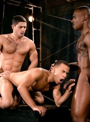 Trelino, Tyson Tyler, Dato Foland, african american, Anal Sex, Group sex, orgies, interacial, oral sex, rimming