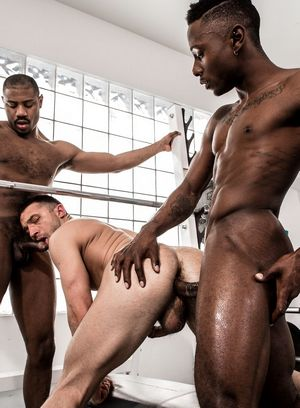 Miller Axton and Adonis Couverture fucks Colby Tucker